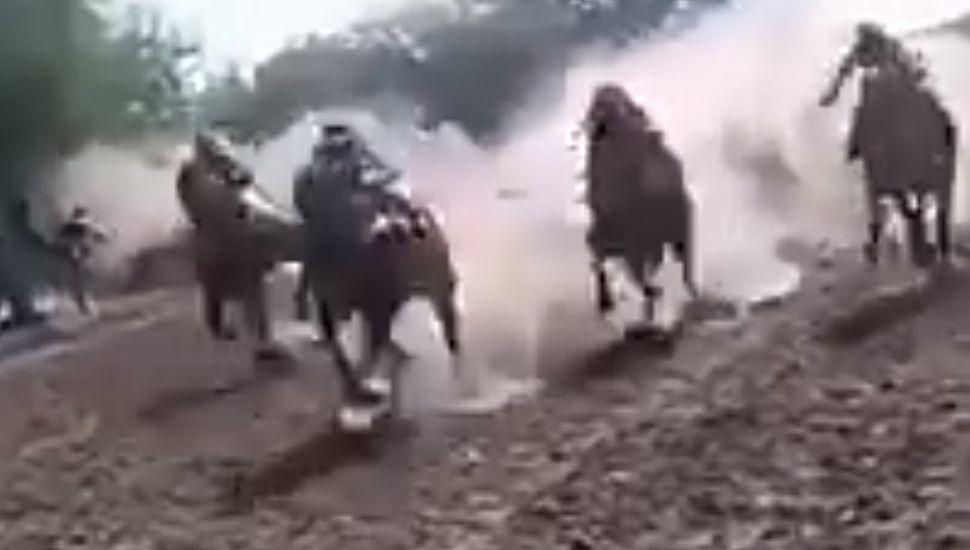 Viral: tremendo accidente en una carrera de caballlos en Córdoba