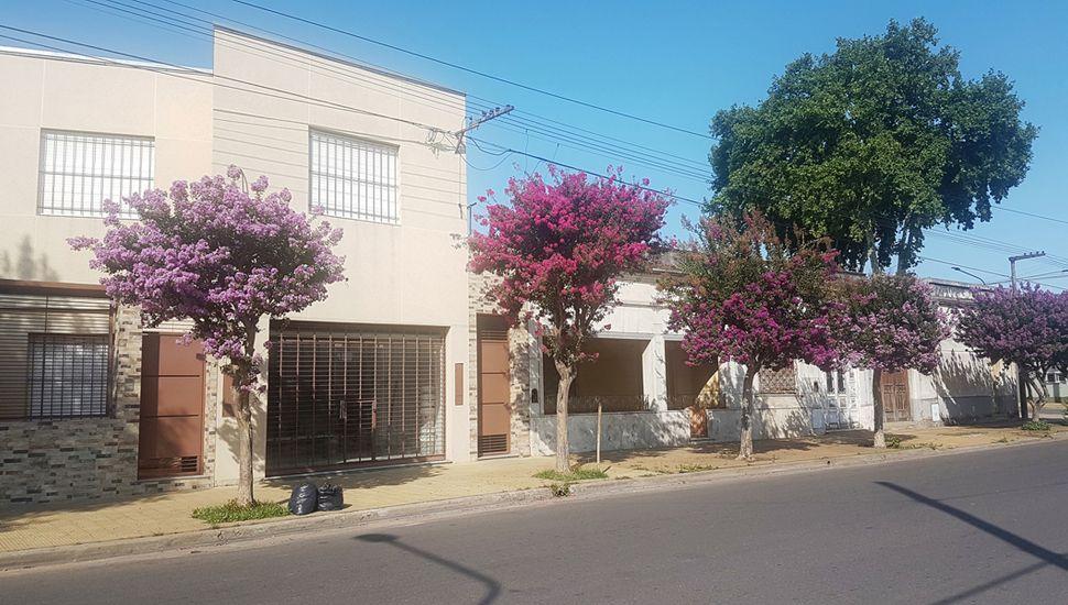 Seguidilla de crespones sobre Rivadavia.