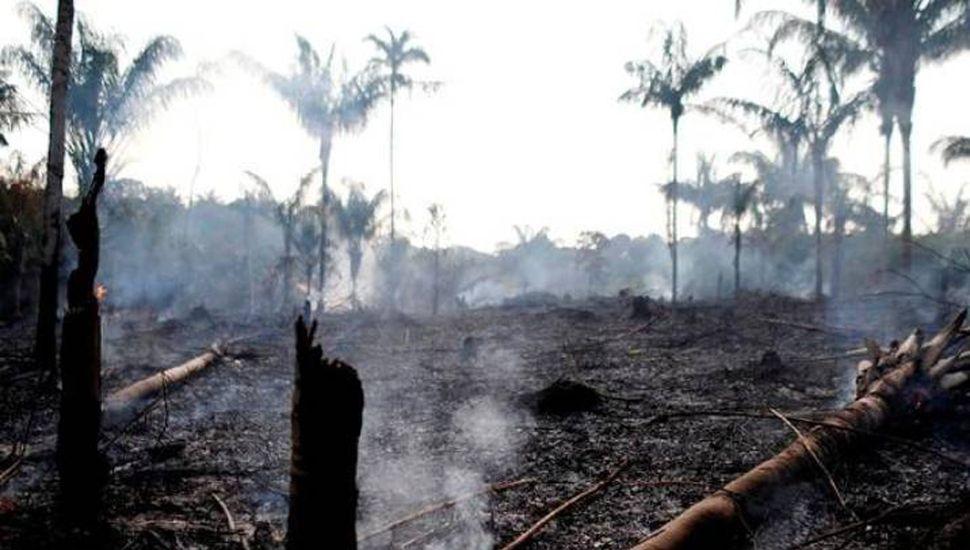 Preocupación mundial y unánime crítica a Brasil por el incendio en el Amazonas