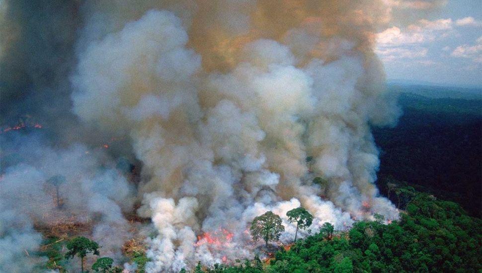No cede la voracidad de las llamas en  el Amazonas y genera alarma mundial