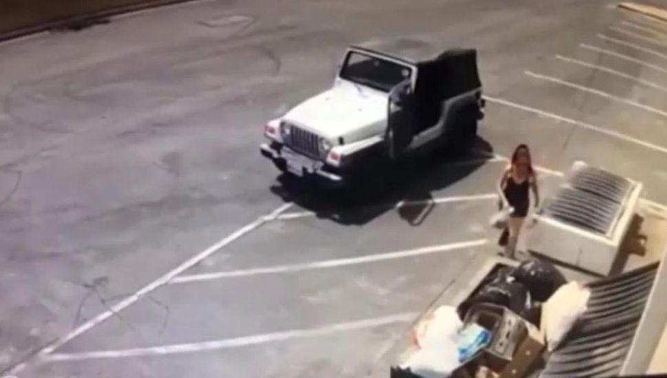 Una mujer tiró siete cachorros a un contenedor de basura