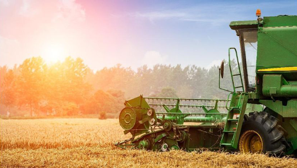 El sector agropecuario tiene un enorme potencial para aportar en el corto plazo las divisas que el país necesita.