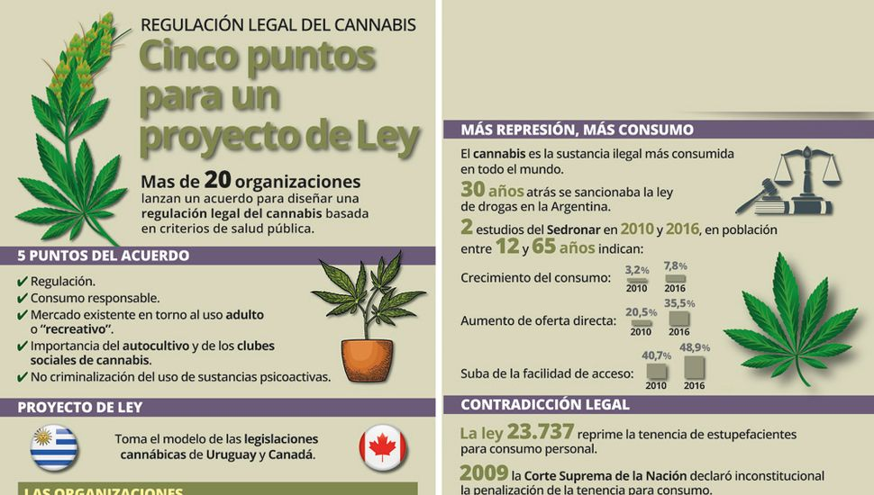 Cannabis medicinal:  por un debate integral