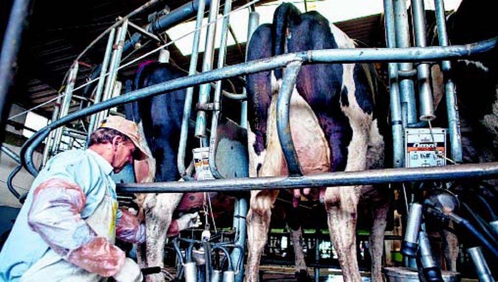 Mejoró el precio de la leche en el tambo, pero no es suficiente.