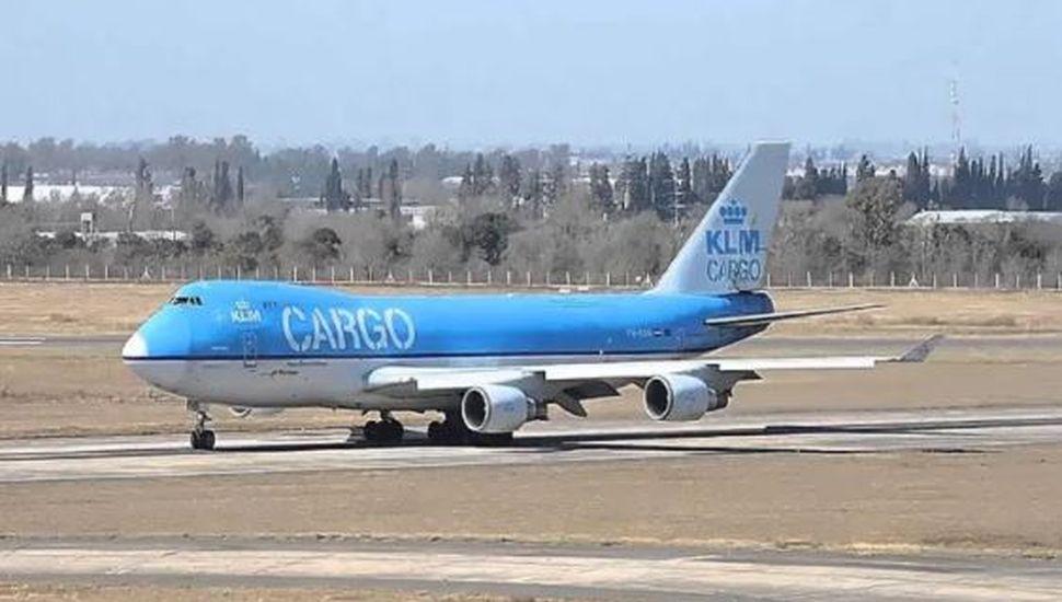 Hallaron más de 80 kilos de cocaína en un avión que estaba por despegar de Ezeiza