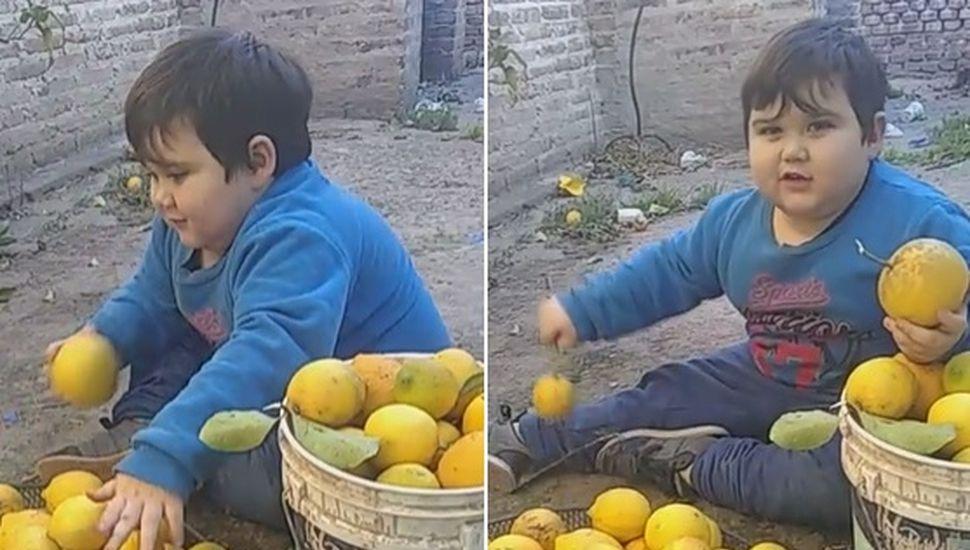 Ciro vende limones para comprarse un peluche
