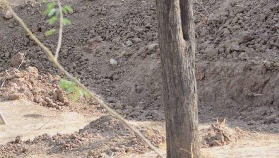 ¿Dónde está el leopardo? El último reto viral que enloquece Twitter