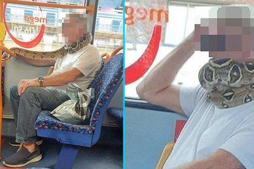 Hombre lleva SERPIENTE en el cuello para que respeten la sana distancia