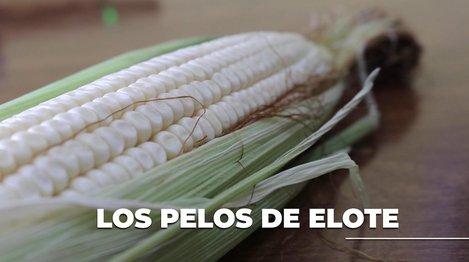 Pelos_de_elote