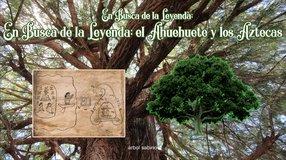 En Busca de la Leyenda; el Ahuehuete y los Aztecas