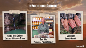 Programa 26; Zacatecas Cuenta