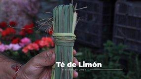 Los Remedios Caseros con Martín Vera; Beneficios del Té de Limón