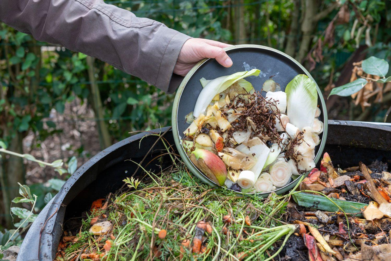 Reduce food waste.