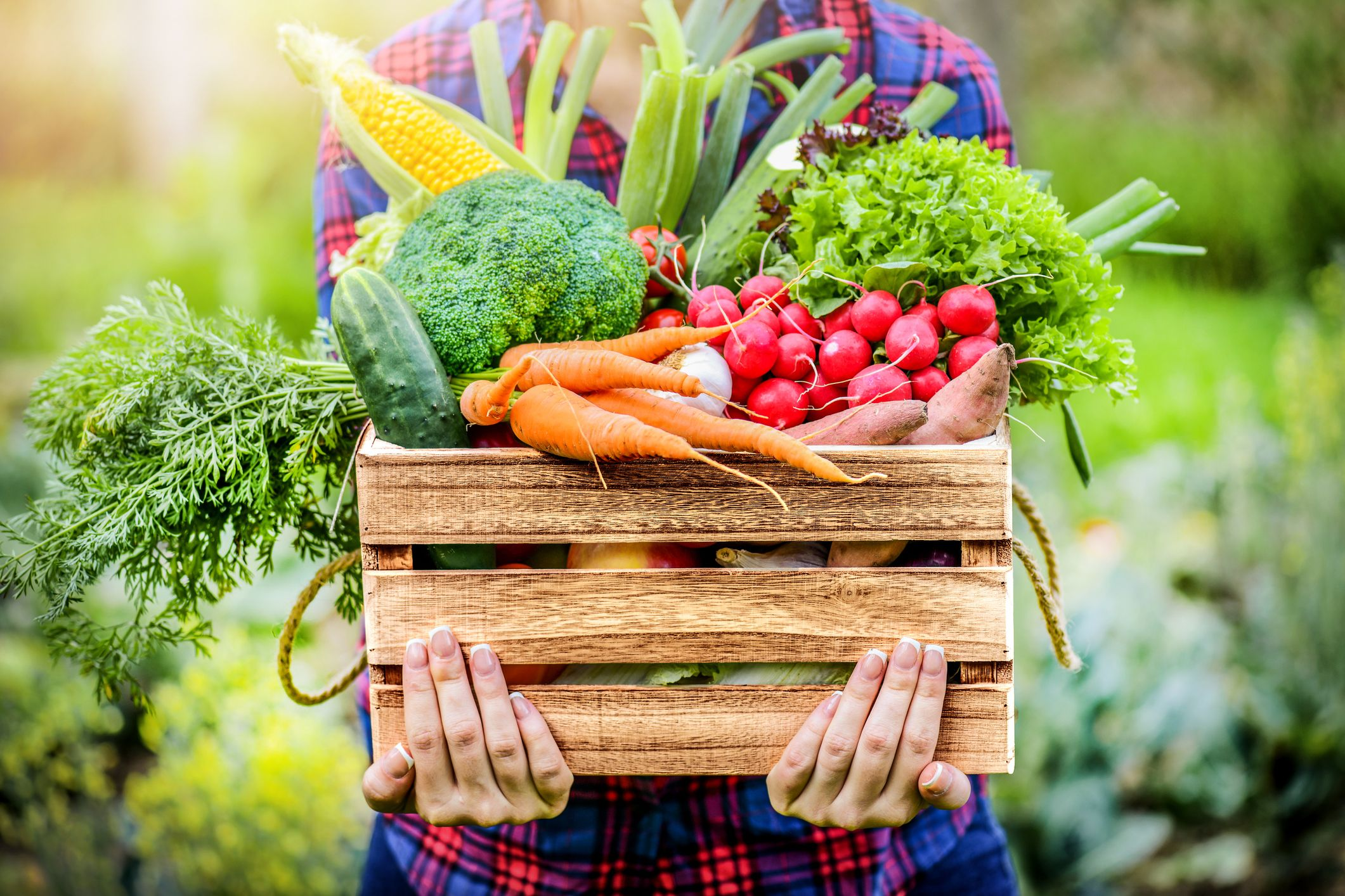 From Farm to Table: Where does food come from?