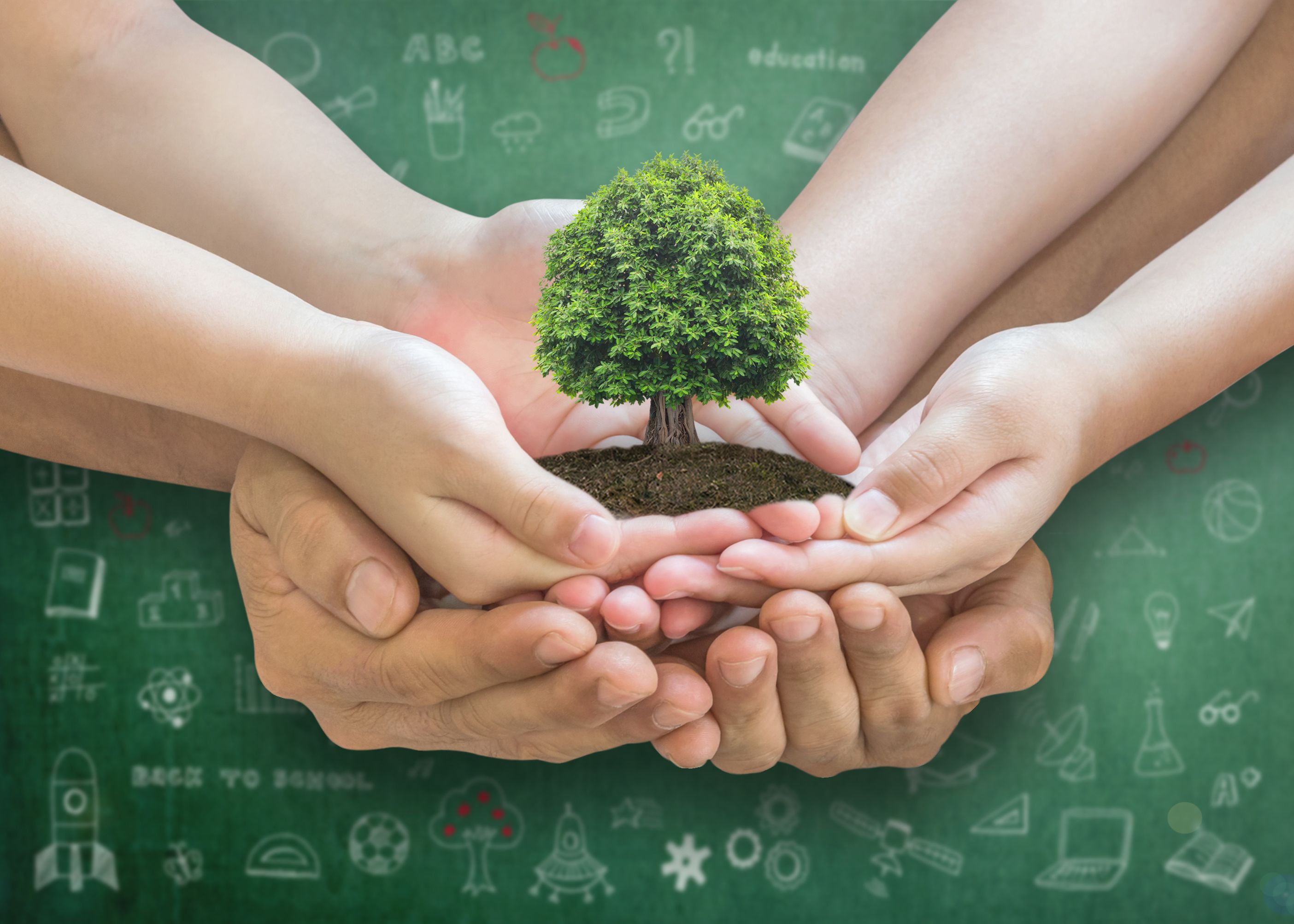 Building Blocks to a Sustainable Future