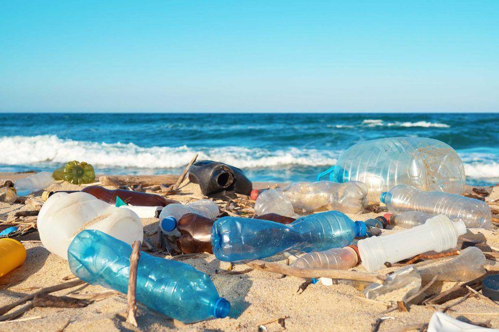 Ocean Friendly: How to Keep Oceans Plastic Free