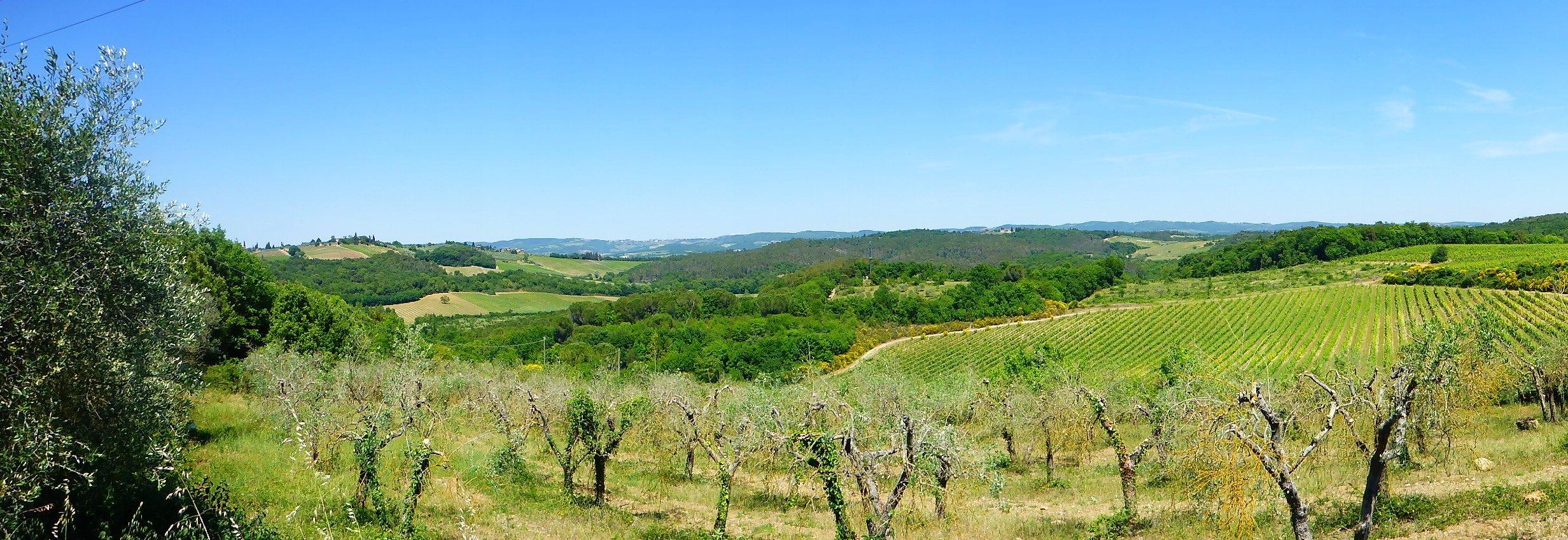 Toscane in Italië, een prachtige streek met mooie dorpjes en stadjes, ideaal voor een ontspannende vakantie.
