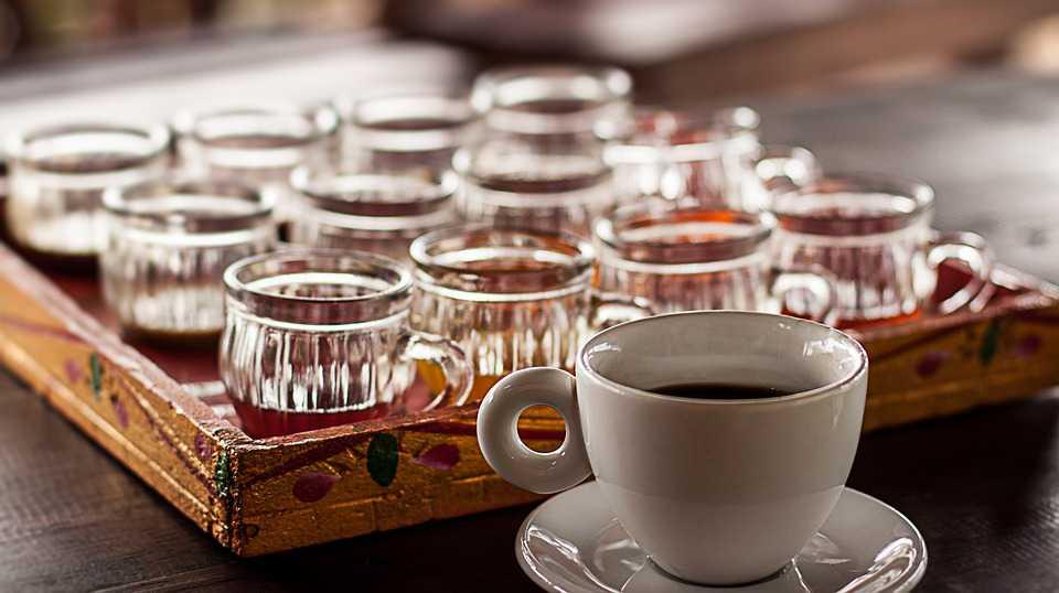 luwak koffie bali