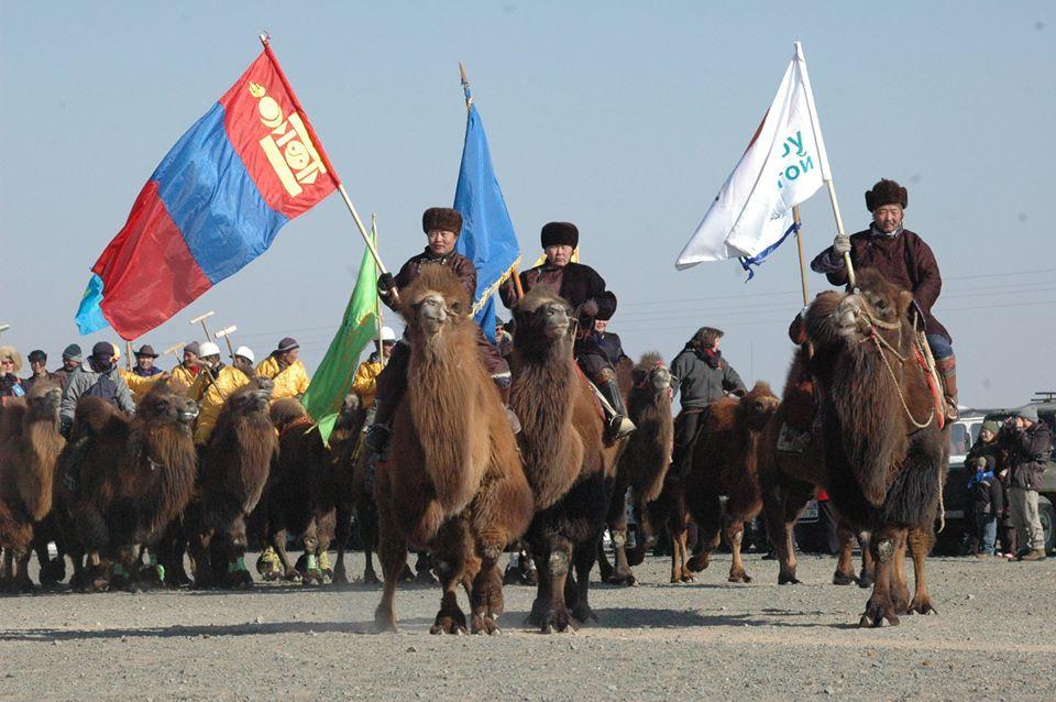Thousand Camel Festival Mongolië