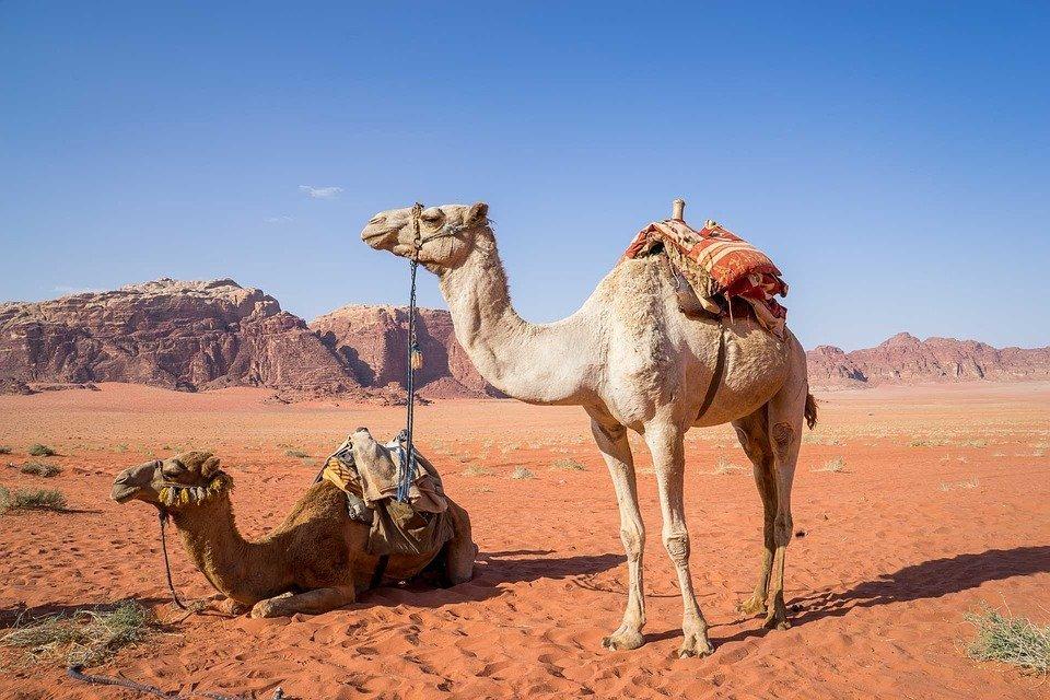 Jordanië vakanties