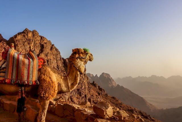 sharm el sheikh egypte