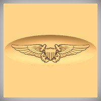 Naval Flight Officer Wings