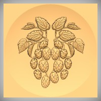 Hops and Leaves 2