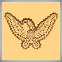 US Civil War Eagle 1C