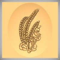 Wheat & Ribbon