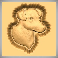 Fox Terrier Smooth Haired