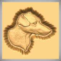 Fox Terrier Wire Haired