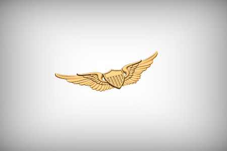 Army Aviator Wings