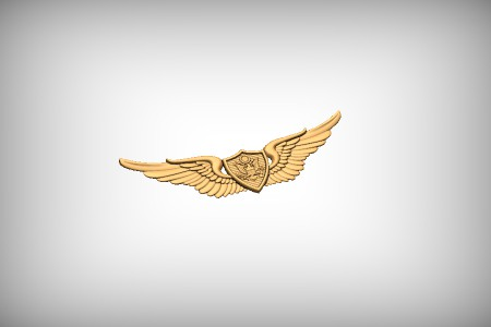 Basic Aviation Badge