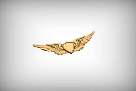 Military Wings 2