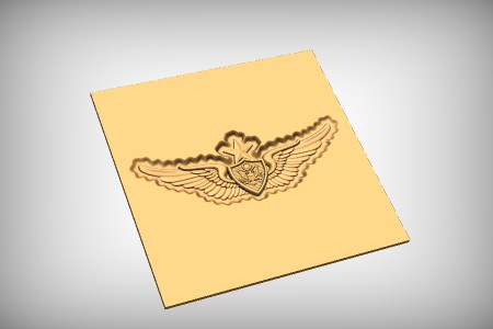 Senior Aviation Badge