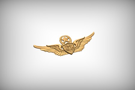 Master Aviation Badge