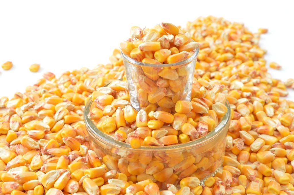 La lutéine, bénéfique pour les yeux, est notamment présente dans le maïs.