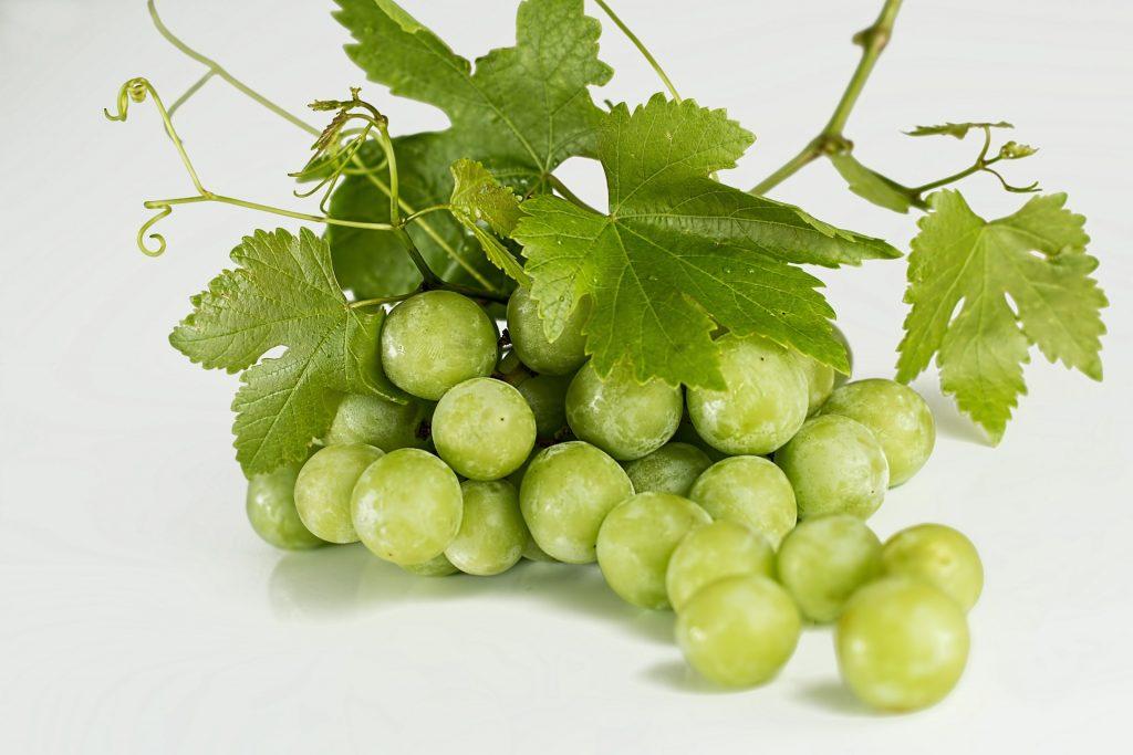 Les extraits de pépins de raisins sont un trésor pour la santé.