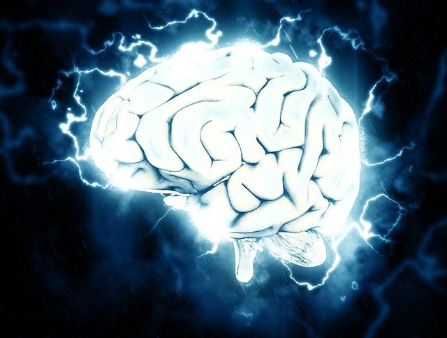 La phosphatidylserine, le nutriment de la mémoire