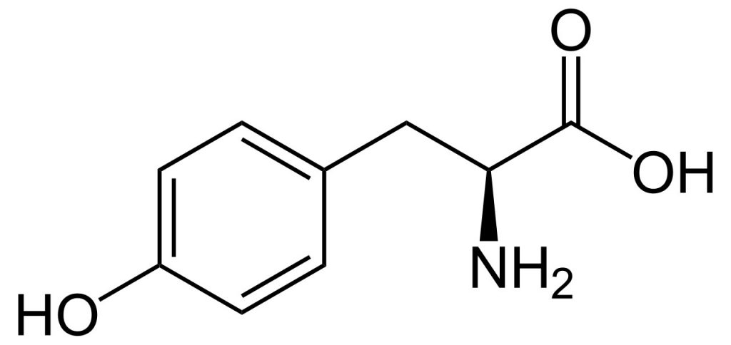 Molécule de la tyrosine