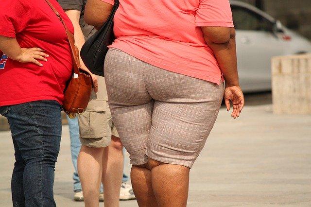 Il existe un lien avéré entre microbiote intestinal et obésité