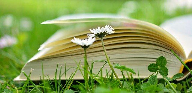 Livre représentant la connaissance: la formation en naturopathie est très exigeante.