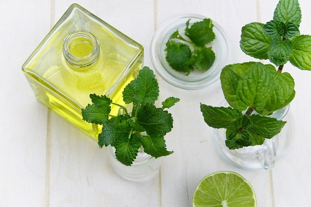 L'huile essentielle de menthe poivrée est obtenue à partir des feuilles de menthe poivrée.