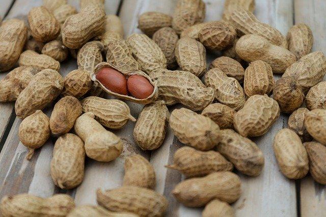 Cacahuètes : la tyrosine est présente en abondance dans certains aliments.