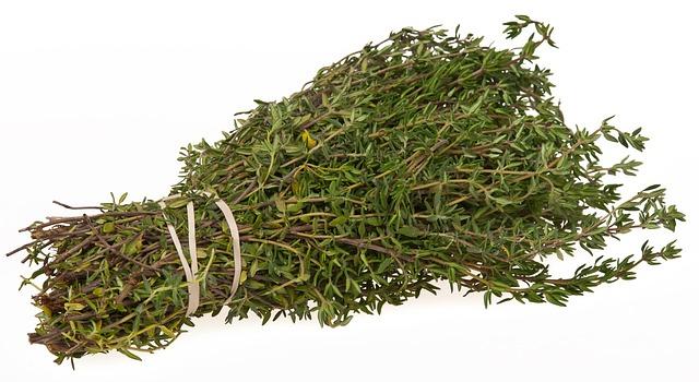 Thym : l'huile essentielle de Thym à géraniol est extraite de la plante Thymus vulgaris.