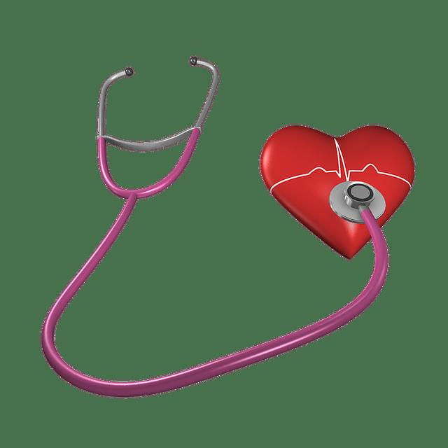 Cœur : l'hypercholestérolémie augmente le risque de maladies cardiovasculaires.