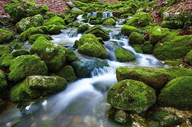 Rock Water, l'eau de roche, est une fleur de Bach.