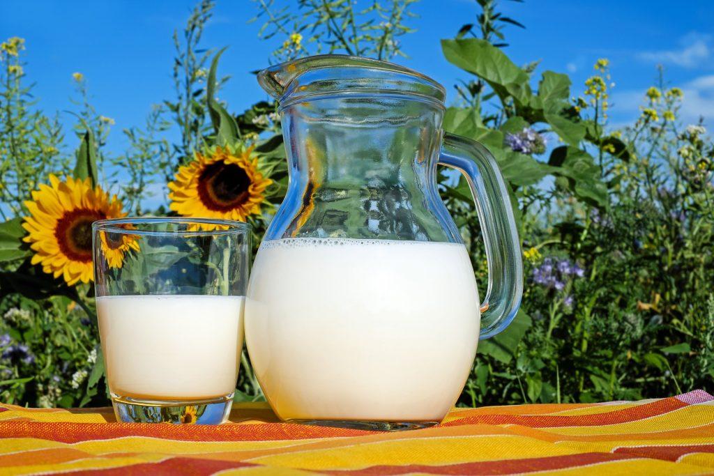 Pichet de lait, riche en phosphore: bienfaits, utilisation et dosage de cet élément minéral.