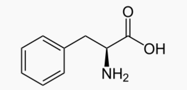 Phénylalanine: bienfaits, effets et danger de cet acide aminé.