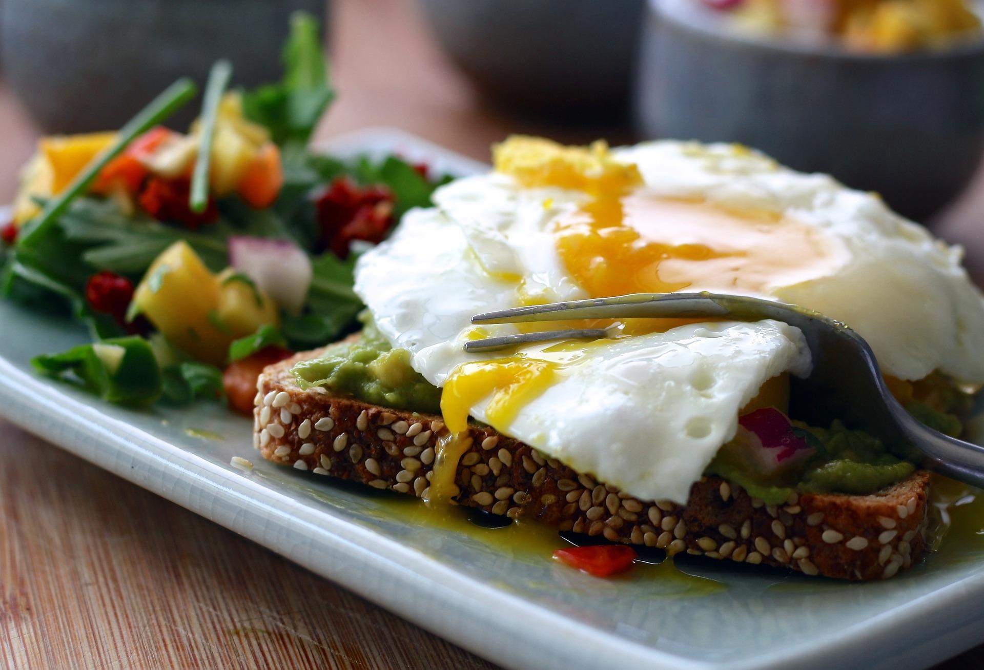 Toast de sésame avec un œuf au plat, alimentation riche en méthionine.